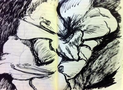 flowers sketchbook