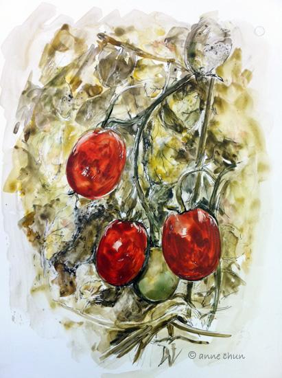 matoes on a vine illustration