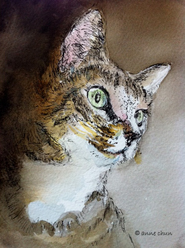 cat drawing in ink