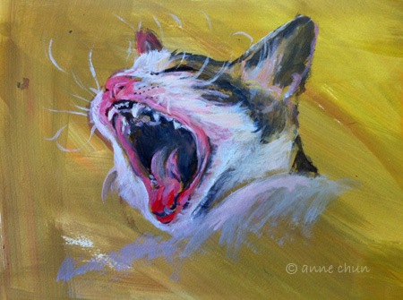 cat roaring