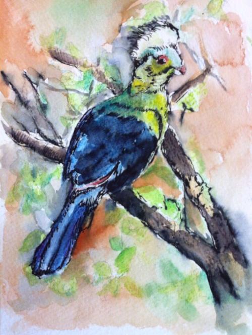 Bird in tree sketch