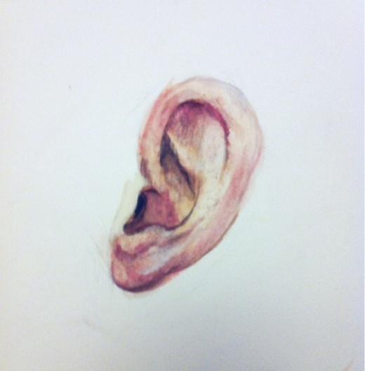 Ear study in watercolor